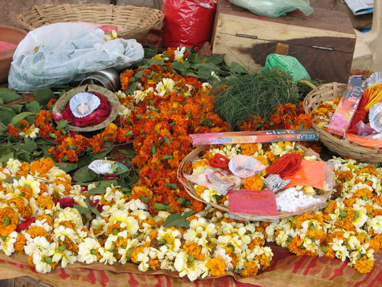 Offerings for Ganga