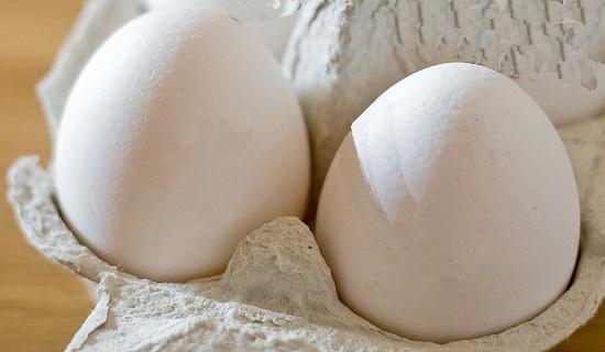 Egg-Carton.jpg