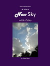 N is for a New Sky
