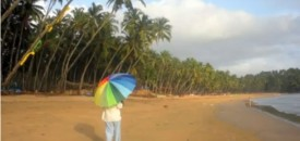 Monsoon Winds