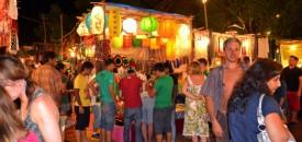 Sannyasins, Tourists and Other Goa Animals