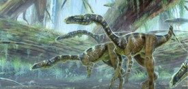 The Triassic Period, new life in-between two major extinctions