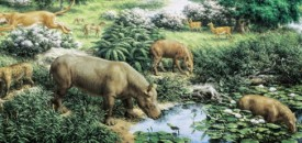 The Oligocene Period, horses, deer, camels, elephants, primates, cats and dogs