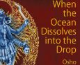 When the Ocean Dissolves into the Drop