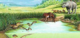 The Eocene Period, birds ruling a warm world
