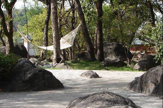 Zen garden at Osho Nisarga