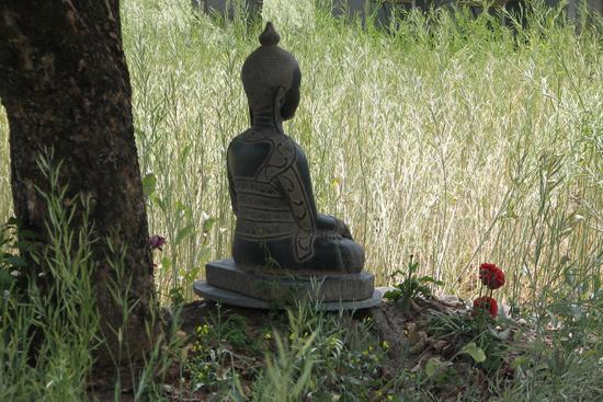 Bhuddha statue