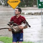 Queensland Floods - The Big Wet [photo by Nick de Villiers, Ipswich]
