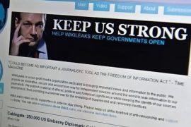 Wikileaks banner