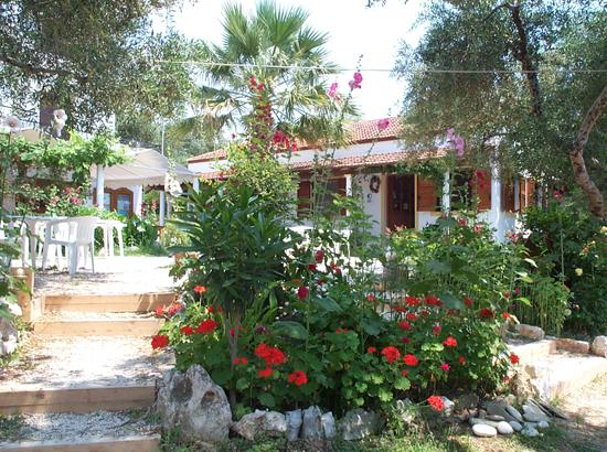 030-zorbas-garden