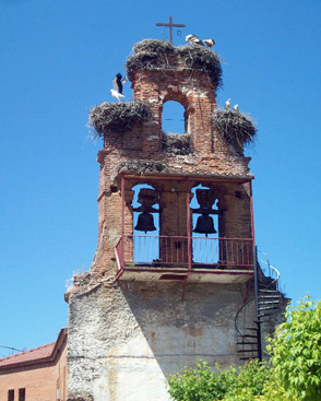 Stork nests, a common sight along the Camino