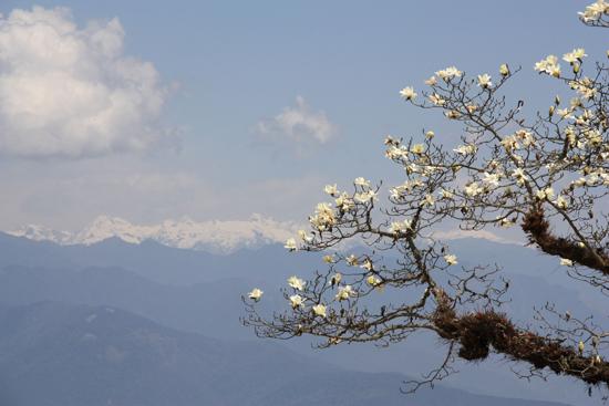 000-bhutan