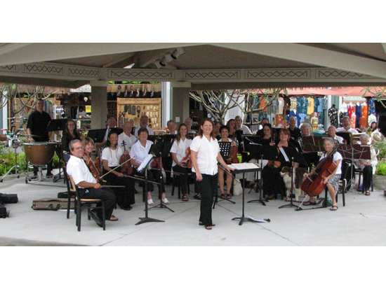 020 The Chamber Orchestra of Kona