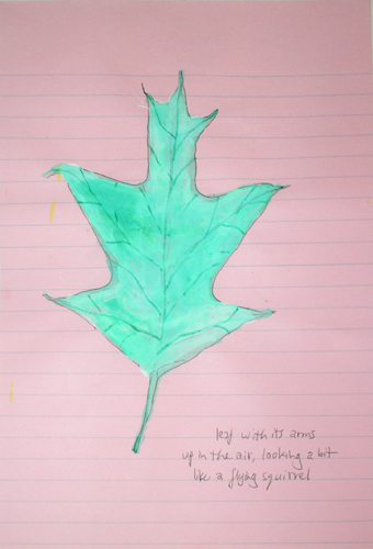 leaf with its arms up in the air, looking a bit like a flying squirrel