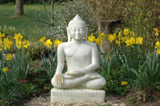 Osho Leela Buddha