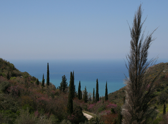 On the road up to the Pantokrator – Corfu