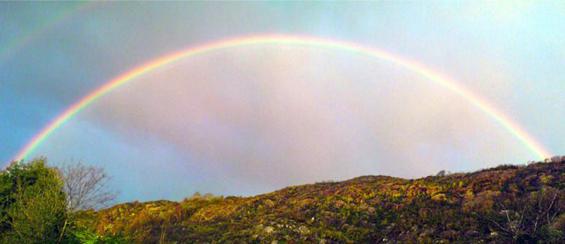 Rainbow - photo by Bria