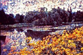 lake by Sudheer