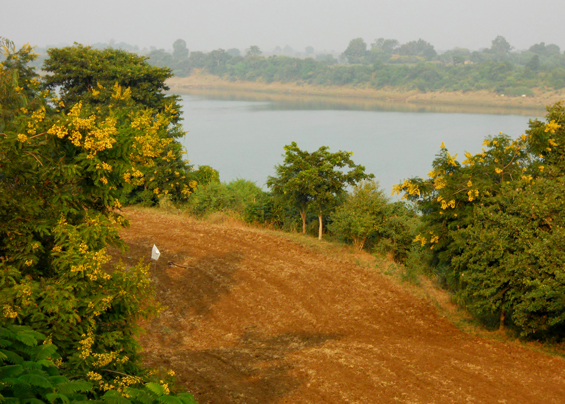 View across the Narmada