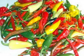 Mixed Chillies Feat.
