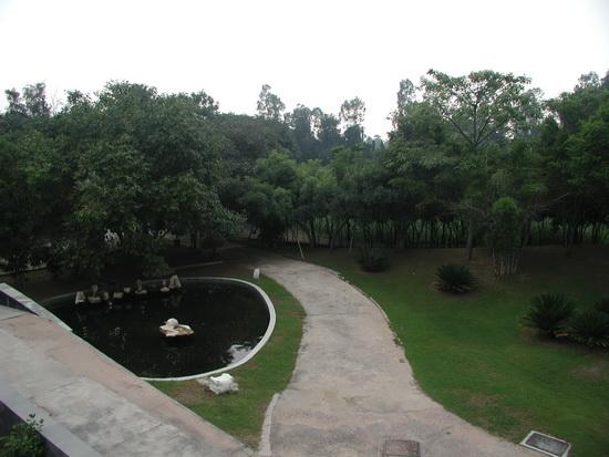 Oshodham - Garden