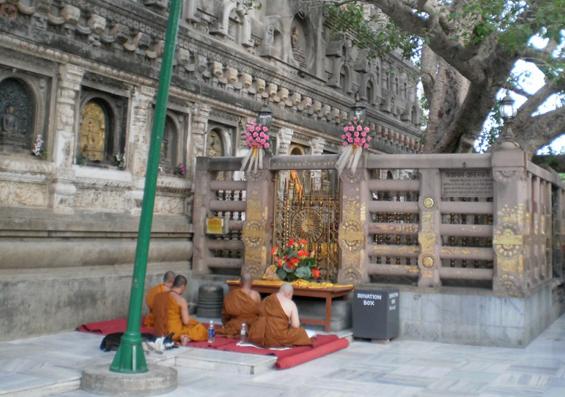Bodhitree in Bodhgaya