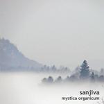 Mystica Organicum by Sanjiva