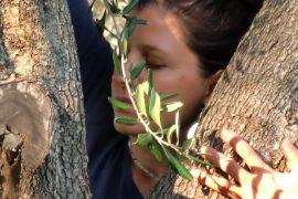face between tree trunks
