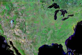 satellite image of USA