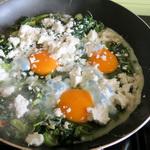 Eggs Avani