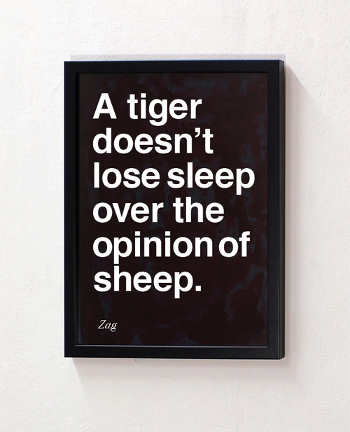 Tiger doesn't lose sleep