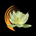 World of Meditation