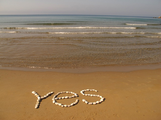 yes - photo by Shivananda