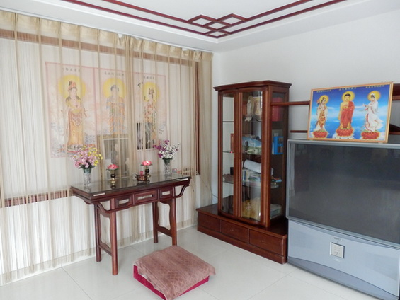 The Shrine and the TV