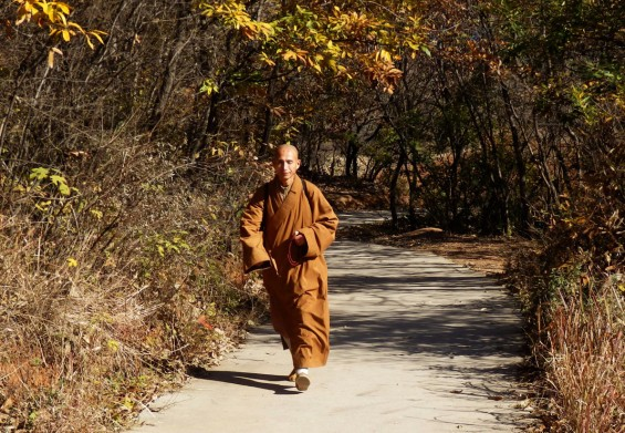 A monk on the path