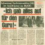 article in Blick