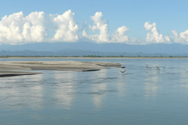Brahmaputra River Feat.
