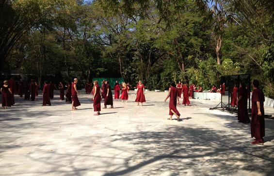 Buddha Grove Pune