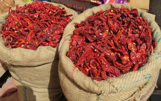 Chilli Sacks