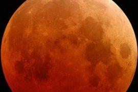 Lunar Eclipse Feat.