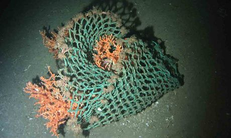 HERMIONE Project Seafloor