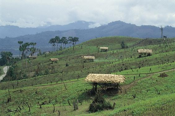 arunachal pardesh