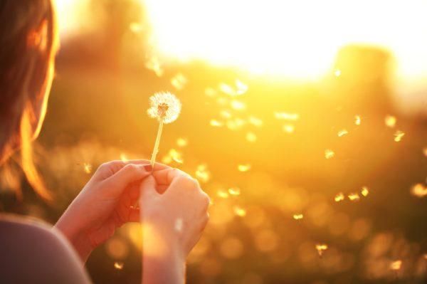 blowing-a-dandelion