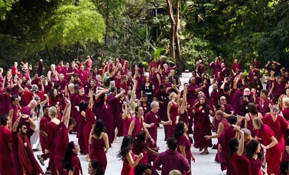 Buddha Grove at the Osho Resort