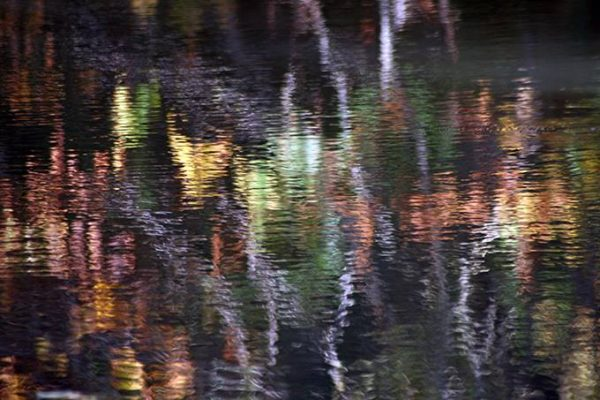 025  Anand Reflections 10