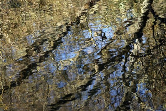 040 Anand Reflections 5