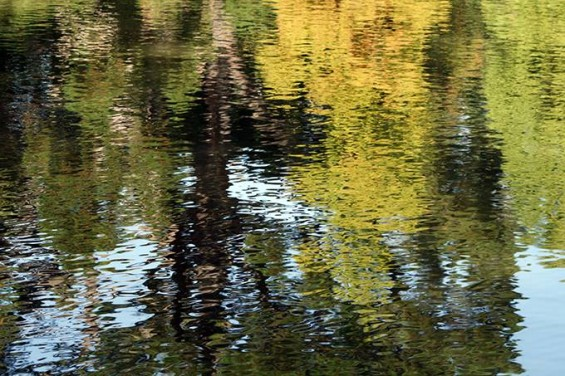 060 Anand Reflections 12