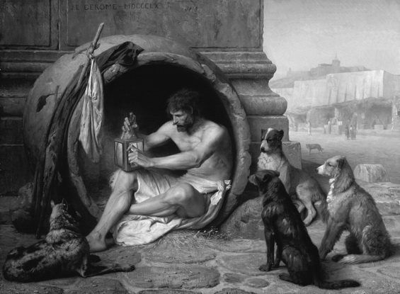 Diogenes bw