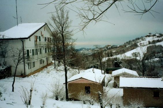 Osho Circle Winter panorama