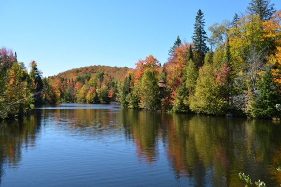 020-The-lake-in-autumn